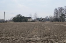 20800 mkw. Stare Proboszczewice