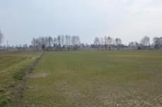 3600 mkw. Proboszczewice Stare, gmina Stara Biała