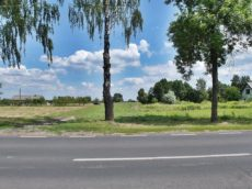 828 mkw. Płock, Nowe Grabie